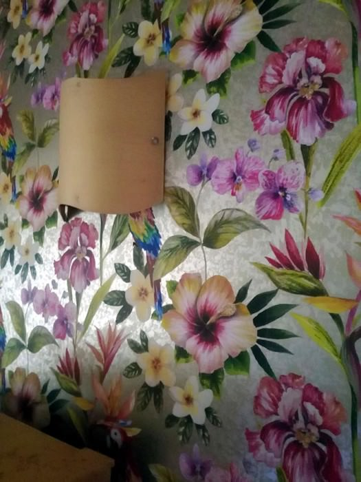 Wallpaper Gadotti Matt pattern Shimmering base surface Flowers Parrots Pearl beige White gold Blue Yellow Green Orange Red Violet