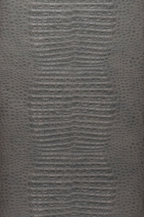 Wallpaper Gavial Matt Imitation leather Grey beige Black grey Umbra grey