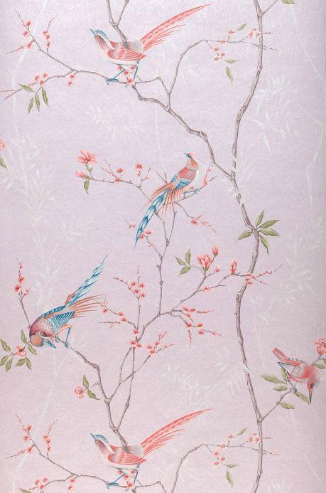 Papier peint Papier peint Comtesse rosé pâle Largeur de lé