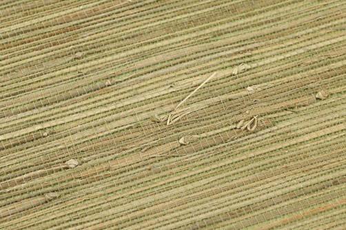 Grasscloth 01