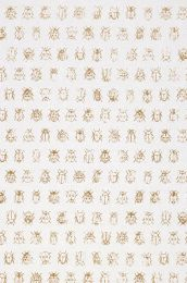 Papel pintado Bug Invasion blanco crema