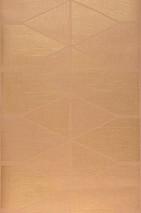 Papier peint Enzo Motif chatoyant Surface mate Éléments graphiques Beige Doré brillant