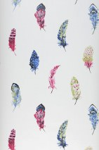 Wallpaper Feathers Matt Feathers White Blue Yellow green Raspberry red Rose Black