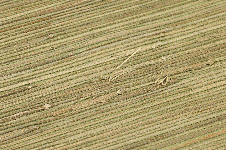 250261-1_grasscloth-015a7320f8ea46d