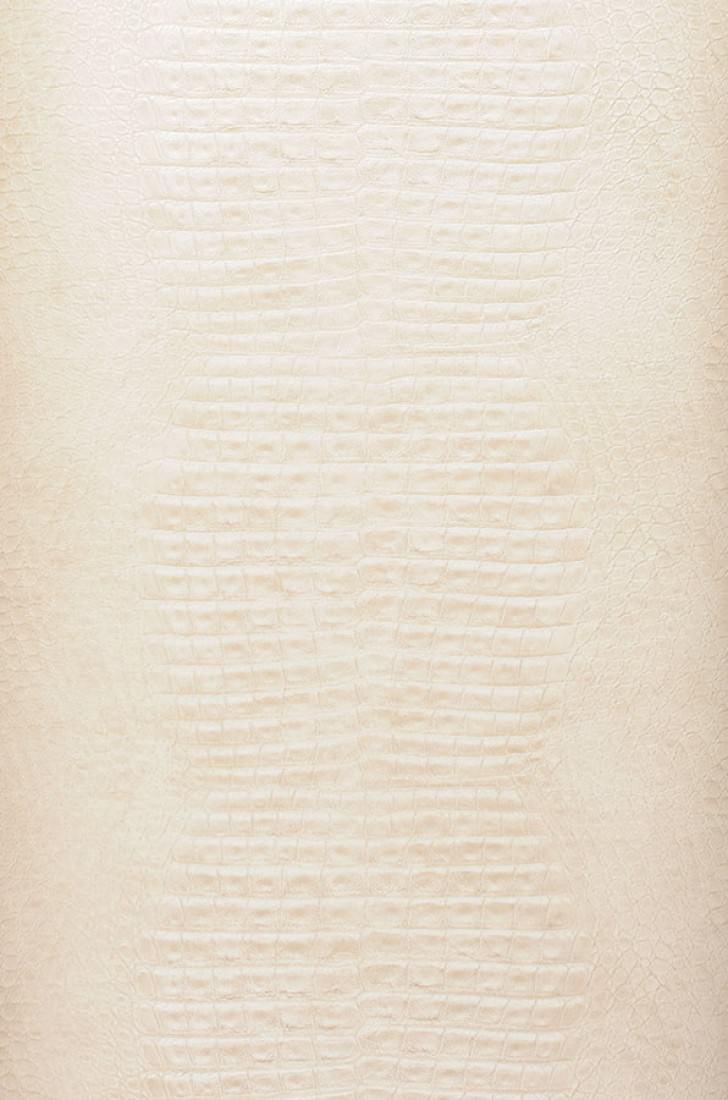 Carta da parati gavial beige marrognolo bianco crema for Carta da parati beige