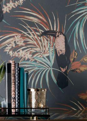 Papier peint Toucan Jungle gris foncé Vue pièce