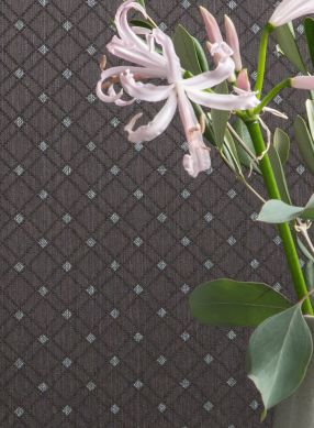 Papel pintado Constantin gris parduzco Ver habitación