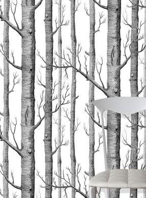Tapete Birch Forest Schwarz Raumansicht
