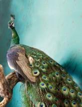 Papel pintado Marble Illusion Brillante Imitación de mármol Verde Verde negruzco