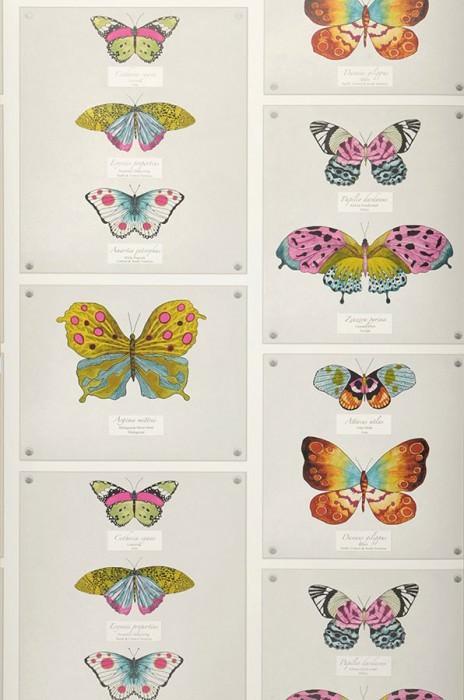 Wallpaper Farfalla Matt Butterflies Cream Heather violet Yellow green Grey white Turquoise blue