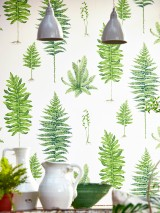 Wallpaper Fulvia Matt Fern leaves Cream Shades of green Light beige grey