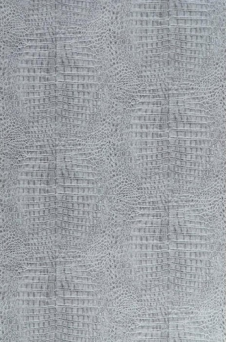 Alligator gris gris clair gris gris clair papier peint nouveaut m - Papier peint nouveaute ...