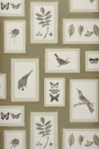 Wallpaper Jara Matt Leaves Flowers Butterflies Birds Olive grey Beige grey Grey white Khaki Black grey Stone grey