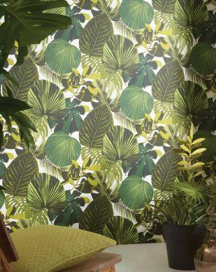 Papel de parede Venaria verde samambaia Ver quarto