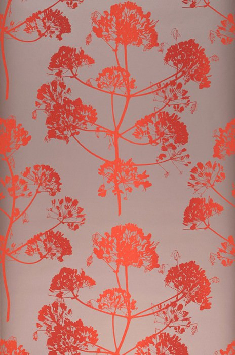 Papel pintado Emorie Mate Flores de campo Marrón claro perla Rojo anaranjado Rojo