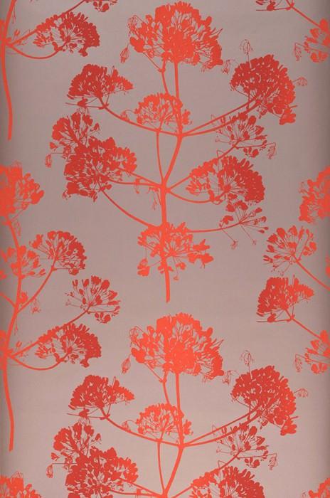 Wallpaper Emorie Matt Field flowers Pearl pale brown Orange red Red
