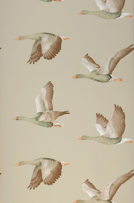 Wallpaper Chloe Matt Birds Eggshell Pale brown Yellow grey Pine green Pastel orange Terra brown