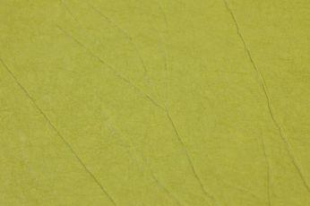 Wallpaper Crush Elegance 05 yellow green