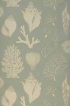 Papier peint Shells Mat Coraux Coquillages Vert pastel Blanc crème