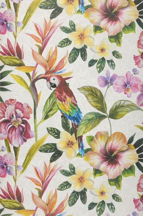 Wallpaper Gadotti Matt Flowers Parrots Grey white White Blue Yellow Green Orange Red Violet