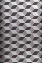Wallpaper Squares Shimmering pattern Matt base surface Cuboids Black Silver