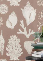 Wallpaper Shells pastel brown