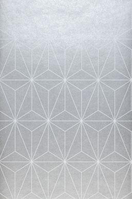 Carta da parati Morton grigio argento Larghezza rotolo