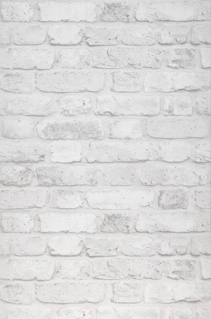 Papier Peint Castor Blanc Cr Me Gris Clair Papier Peint Des