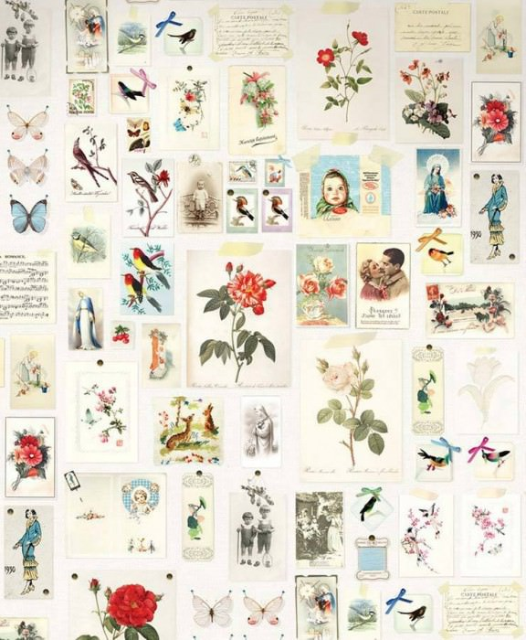 Wallpaper Nanabosho Matt Old photos and postcards Flowers Vintage pictures Birds White Yellow Light blue Olive green Red