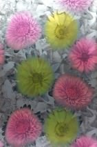 Wallpaper Violina Shimmering Flowers Silver grey Heather violet Yellow green