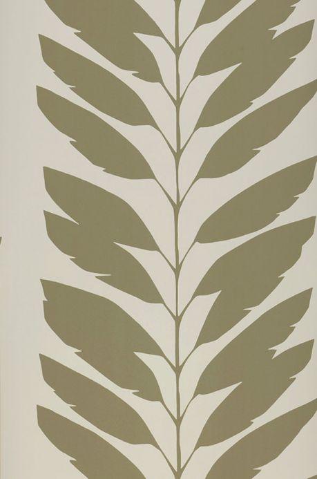 Archiv Papier peint Koda gris olive Largeur de lé