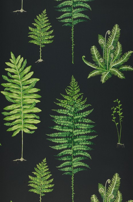 Wallpaper Fulvia Matt Fern leaves Black Shades of green Light beige grey