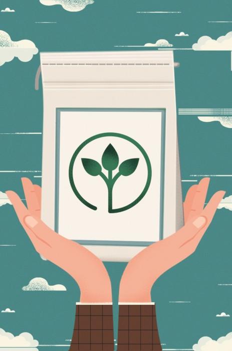 Wallpaper Organic Wallpapering Paste