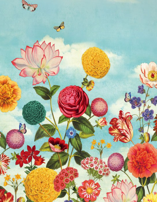 Wallpaper Dido Matt Leaves Flowers Butterflies Clouds Pastel light blue Blue Yellow Green Red Violet