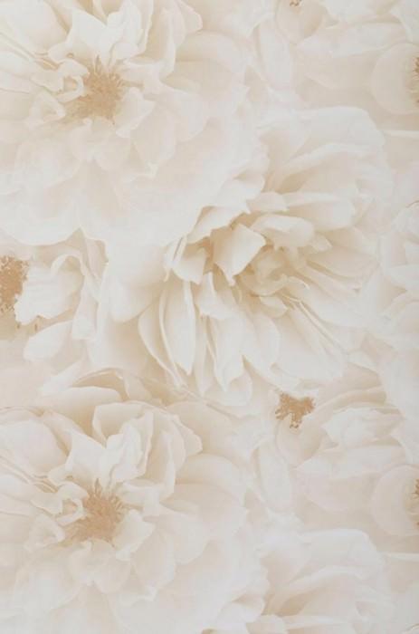 Papier peint Melope Mat Fleurs Beige Blanc crème Ivoire clair