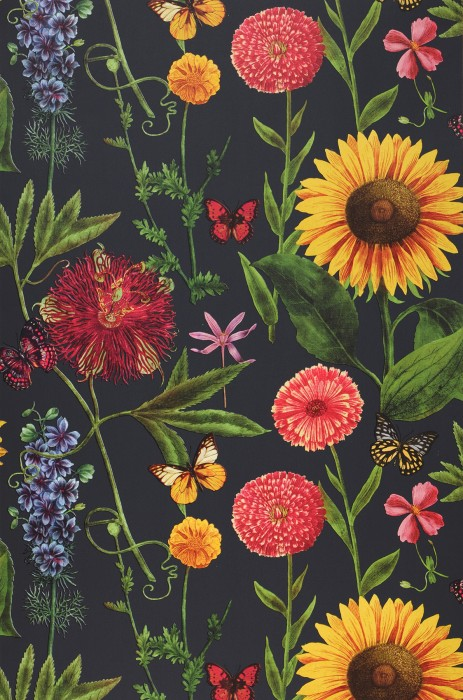 Wallpaper Filomena Matt Flowers Butterflies Black grey Yellow Green Rose Red Violet blue