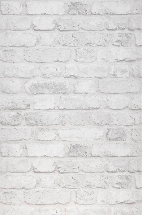 Carta da parati pietra Carta da parati Castor grigio chiaro  Larghezza rotolo