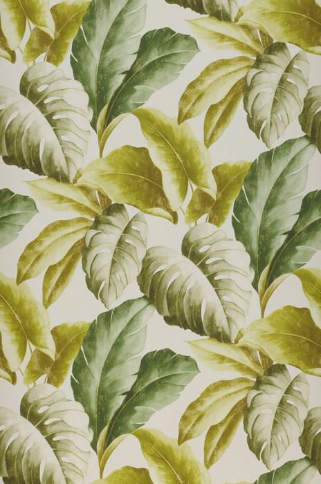 Wallpaper Verena Matt Leaves Cream Green yellow Leaf green Olive green