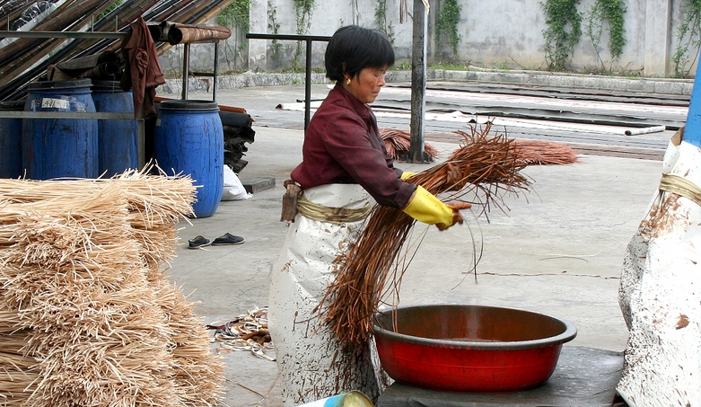 Grastapeten-Fasern-werden-eingefaerbt