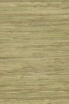 Wallpaper Grasscloth 01 Matt Solid colour Beige Pale green