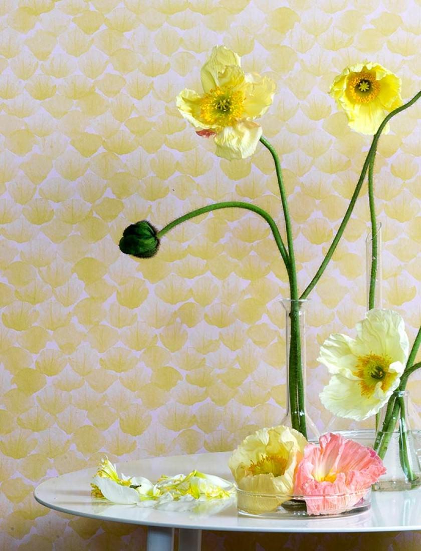 tapete poppy zartrosa zitronengelb tapeten der 70er. Black Bedroom Furniture Sets. Home Design Ideas