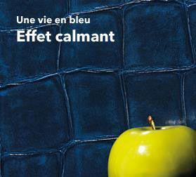 Sus Au Blues Avec Le Papier Peint Bleu Papier Peint Bleu En Boutique
