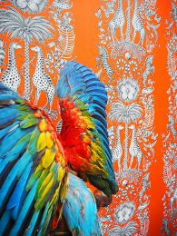 Papier peint Kruger orange